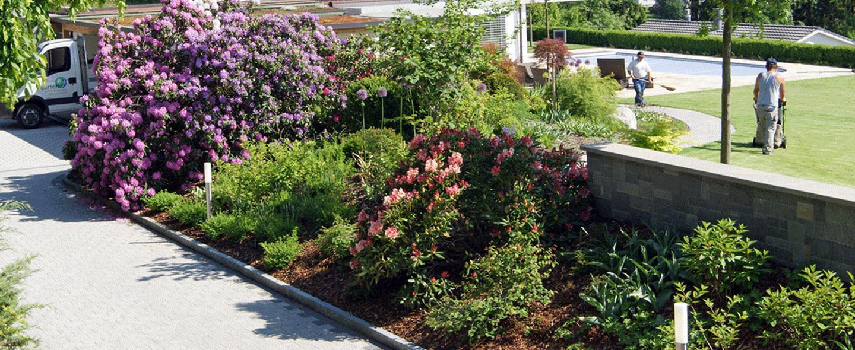 Gartenunterhalt und Gartenpflege
